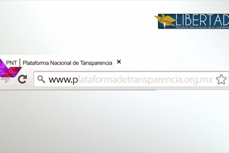 Seminario transparencia